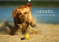 Cover-Bild zu Blankenhaus, Katharina: Labrador ... ein Freund für alle Fälle (Wandkalender 2021 DIN A3 quer)
