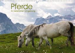 Cover-Bild zu Niederkofler, Georg: Pferde - In natürlicher Umgebung (Wandkalender 2021 DIN A3 quer)