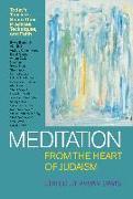 Cover-Bild zu Brill, Alan (Solist): Meditation from the Heart of Judaism