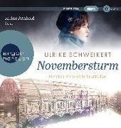 Cover-Bild zu Berlin Friedrichstraße: Novembersturm von Schweikert, Ulrike
