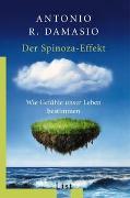 Cover-Bild zu Damasio, Antonio R.: Der Spinoza-Effekt