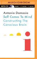 Cover-Bild zu Damasio, Antonio: Self Comes to Mind: Constructing the Conscious Brain
