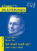 Cover-Bild zu Ich knall euch ab! - Give a Boy a Gun von Morton Rhue. Textanalyse und Interpretation (eBook) von Rhue, Morton