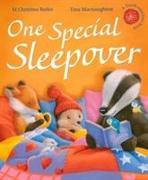 Cover-Bild zu One Special Sleepover von Butler, M Christina