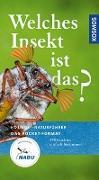 Cover-Bild zu Welches Insekt ist das? von Bellmann, Dr. Heiko