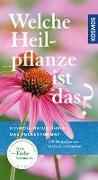 Cover-Bild zu Welche Heilpflanze ist das? von Hensel, Wolfgang