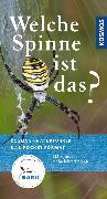 Cover-Bild zu Welche Spinne ist das? (eBook) von Baehr, Martin