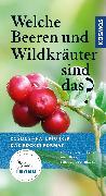 Cover-Bild zu Welche Beeren und Wildkräuter sind das? von Dreyer, Eva-Maria