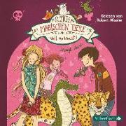 Cover-Bild zu Auer, Margit: Voll verknallt