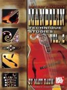 Cover-Bild zu Mandolin Technique Studies, Volume 2 (eBook) von Raum, Matt