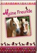 Cover-Bild zu Meine Freunde - Pferde