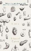 Cover-Bild zu Carey, Edward: Little: A Times and Sunday Times Book of the Year (eBook)