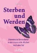 Cover-Bild zu Sterben und Werden von Skala, Sabine