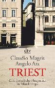 Cover-Bild zu Triest von Magris, Claudio