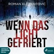 Cover-Bild zu Klementovic, Roman: Wenn das Licht gefriert