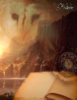 Cover-Bild zu Sternenfeuer, Samuriel: Fantasy Notizbuch: Eulenmagie - weiße Seiten mit Eckmotiv