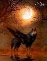 Cover-Bild zu Sternenfeuer, Samuriel: Fantasy Notizbuch: Schattenwolf - weiße Seiten mit Eckmotiv
