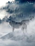 Cover-Bild zu Sternenfeuer, Samuriel: Fantasy Notizbuch: Wölfe im Nebel - weiße Seiten mit Eckmotiv