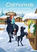 Cover-Bild zu OSTWIND - Chaos auf dem Wintermarkt