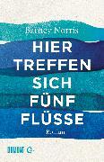 Cover-Bild zu Norris, Barney: Hier treffen sich fünf Flüsse (eBook)