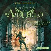 Cover-Bild zu eBook Das brennende Labyrinth