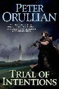 Cover-Bild zu Trial of Intentions (eBook) von Orullian, Peter