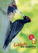 Cover-Bild zu Ruge, Klaus: Entdecke die Spechte