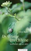 Cover-Bild zu Kurz, Alex: Ds Grosse im Chlyne