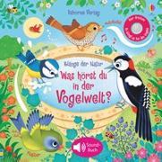 Cover-Bild zu Taplin, Sam: Klänge der Natur: Was hörst du in der Vogelwelt?