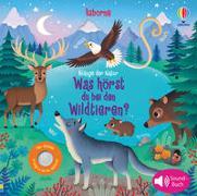 Cover-Bild zu Taplin, Sam: Klänge der Natur: Was hörst du bei den Wildtieren?