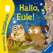Cover-Bild zu Tünner, Klara: Mein erstes Buggybuch: Hallo, Eule!