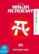 Cover-Bild zu Lüftner, Kai: Ninja Academy 1 (eBook)
