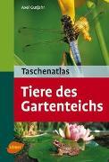 Cover-Bild zu Gutjahr, Axel: Taschenatlas. Tiere des Gartenteichs
