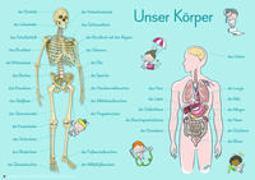 Cover-Bild zu Verlag an der Ruhr, Redaktionsteam: Merk-Poster: 6 A1-Merk-Poster für den Sachunterricht - Jahreskreis, Körper, Waldtiere, Epochen, Kontinente, vom Korn zum Brot