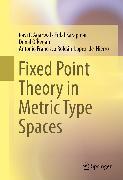 Cover-Bild zu Fixed Point Theory in Metric Type Spaces (eBook) von O'Regan, Donal