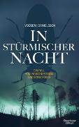 Cover-Bild zu In stürmischer Nacht von Voosen, Roman