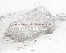 Cover-Bild zu Munier, Vincent: Zwischen Fels und Eis