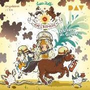 Cover-Bild zu Die Haferhorde - Teil 14: Löschen im Galopp von Kolb, Suza