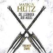 Cover-Bild zu Tobender Sturm (Audio Download) von Heitz, Markus