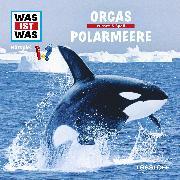 Cover-Bild zu Was ist was Hörspiel: Orcas/ Polarmeere (Audio Download) von Baur, Manfred