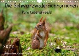 Cover-Bild zu Die Schwarzwald-Eichhörnchen (Wandkalender 2022 DIN A4 quer) von Adam, Heike