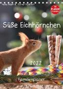 Cover-Bild zu Süße Eichhörnchen (Tischkalender 2022 DIN A5 hoch) von Adam, Heike