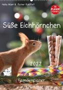 Cover-Bild zu Süße Eichhörnchen (Wandkalender 2022 DIN A2 hoch) von Adam, Heike