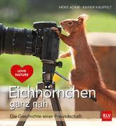 Cover-Bild zu Eichhörnchen ganz nah von Adam, Heike
