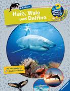 Cover-Bild zu Wieso? Weshalb? Warum? ProfiWissen: Haie, Wale und Delfine (Band 24) von Kienle, Dela