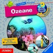 Cover-Bild zu Ozeane von Lipan, Sabine
