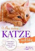 Cover-Bild zu Was meine Katze mich lehrt von Orrù-Benterbusch, Susanne