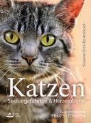 Cover-Bild zu Katzen - Seelengefährten & Herzeroberer von Orrù-Benterbusch, Susanne