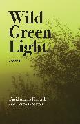 Cover-Bild zu Wild Green Light (eBook) von Richards, David Adams
