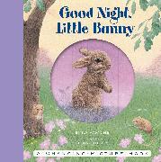 Cover-Bild zu Good Night, Little Bunny von Hawkins, Emily